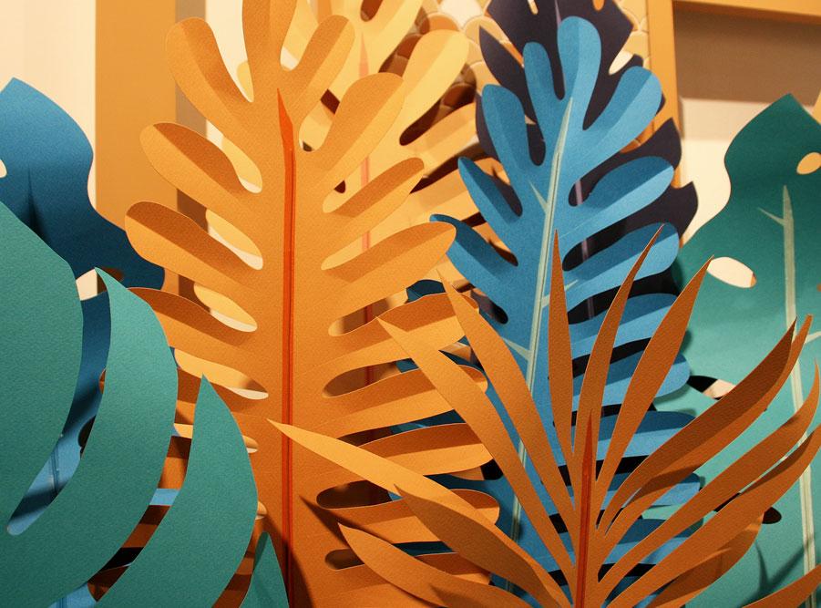 paper plants